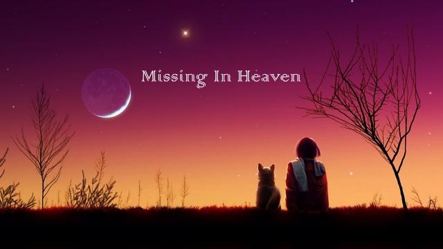 missing.Fotor